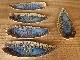 Gesson leaf plates